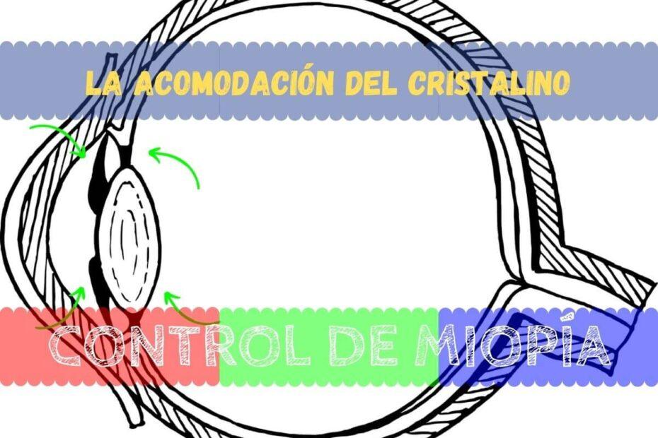 Banner - Acomodación del cristalino