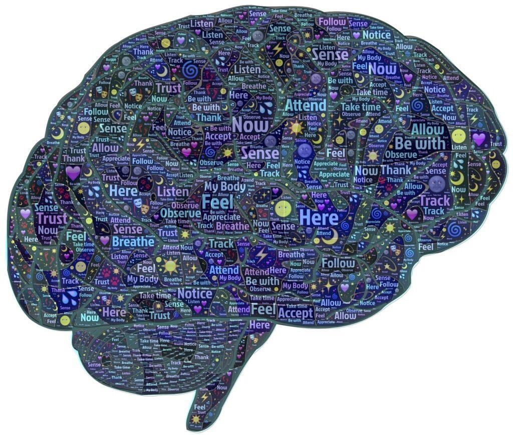 El cerebro tiene el control sobre los músculos extraoculares, incluido el oblicuo superior